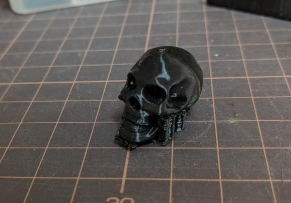 cropped_20190407102015_pla-skull00